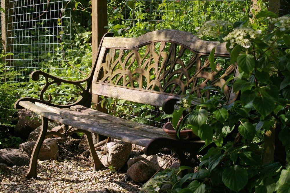 Zo zorg je voor schaduw in je tuin
